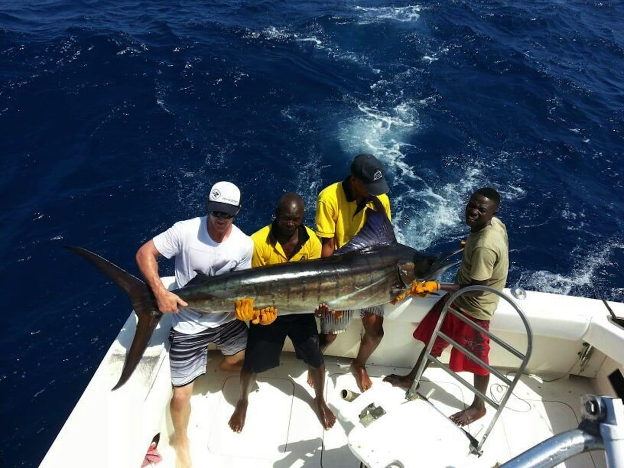 Marlin deep sea fishing Kenya