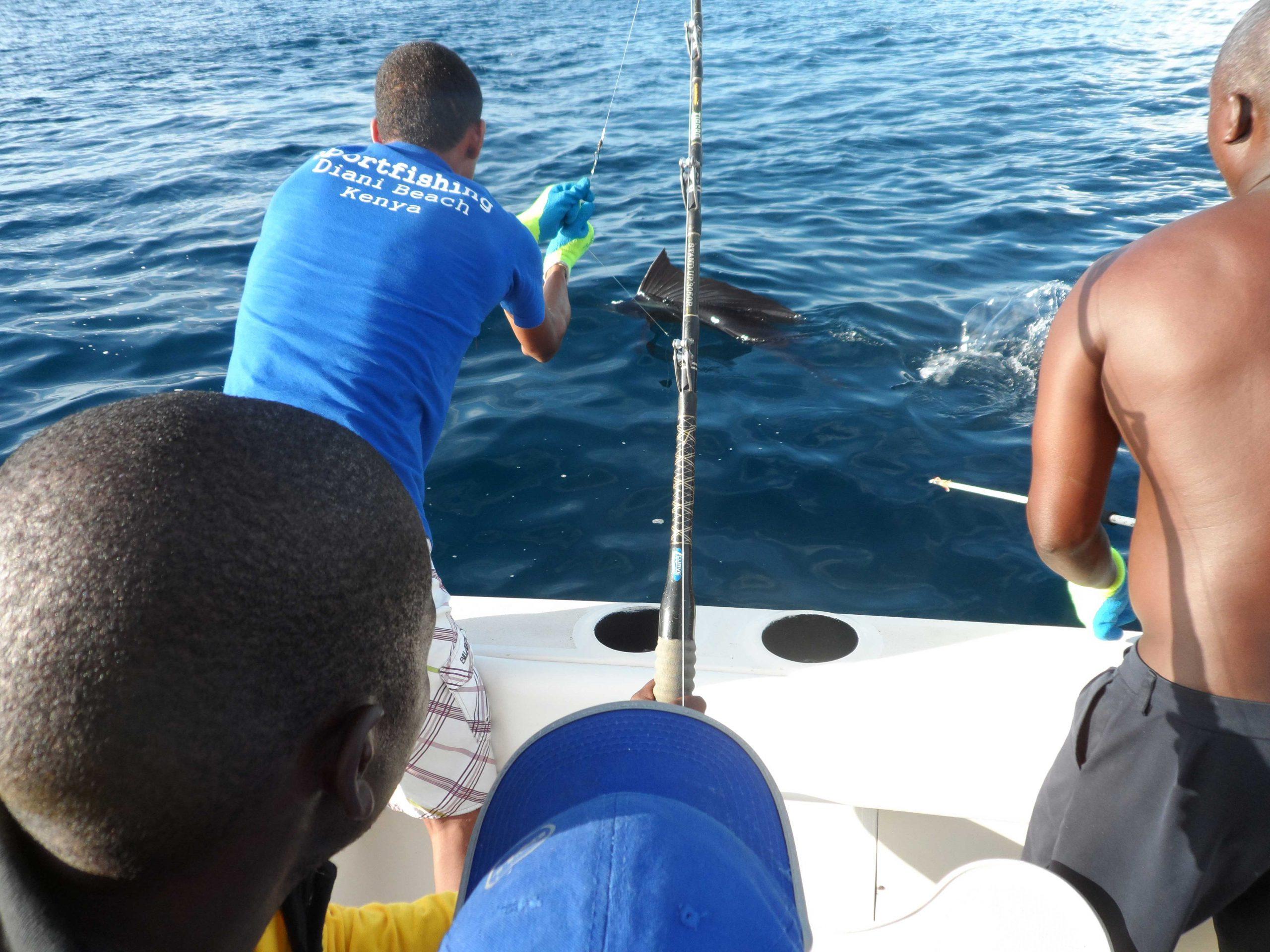 Had day fishing trip Diani