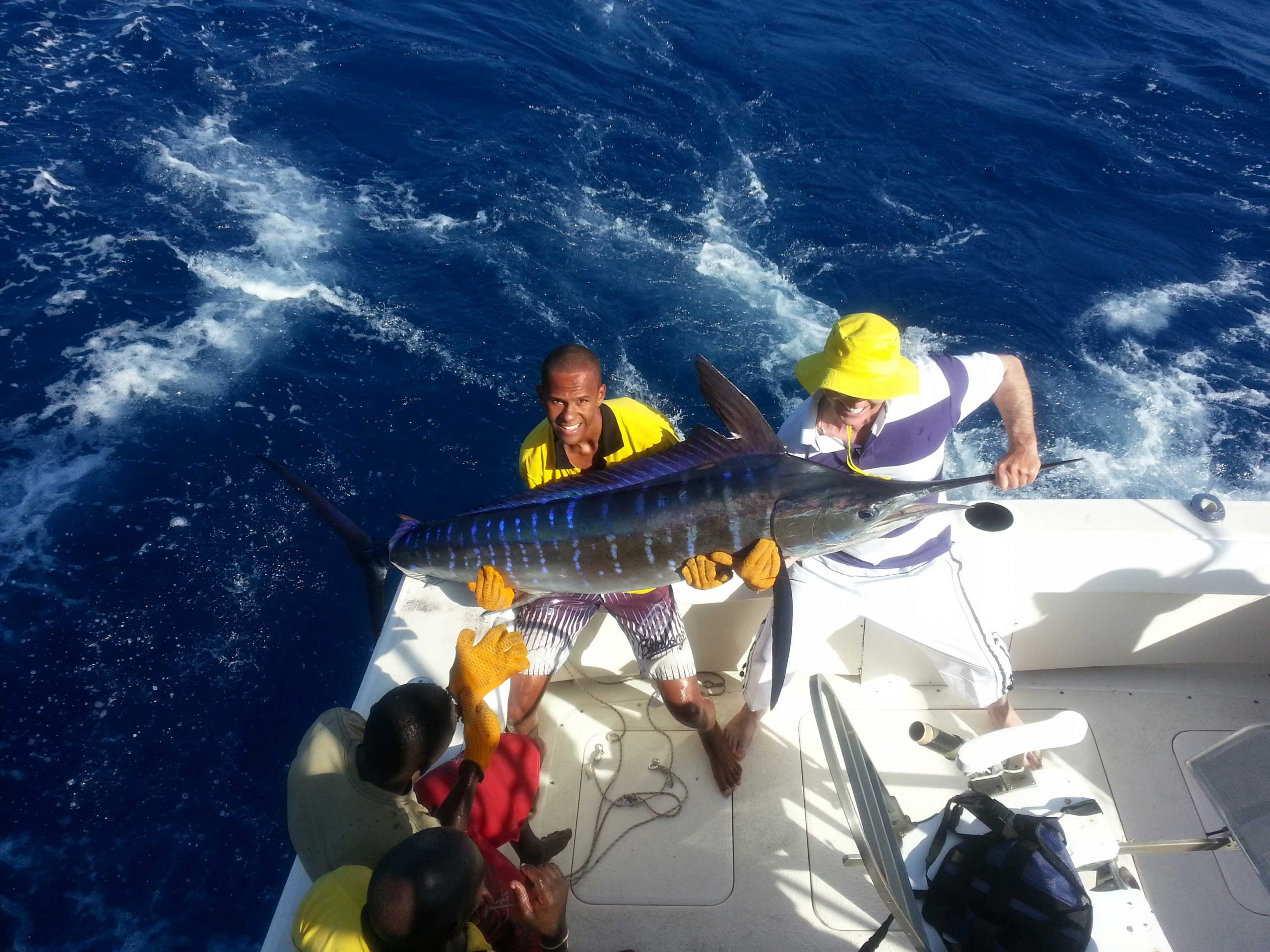 Striped marlin catch Kenya