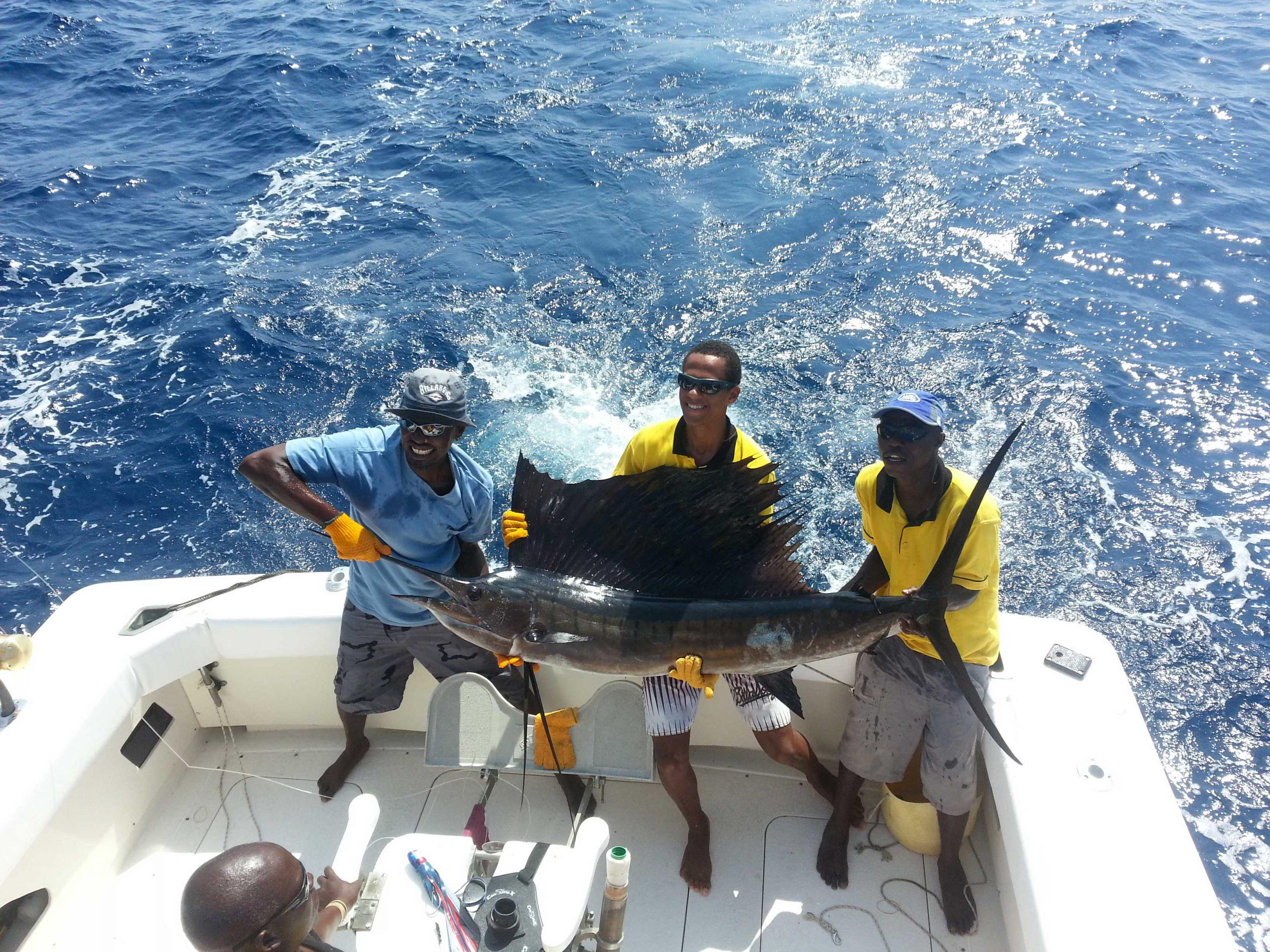 sailfish catch in diani