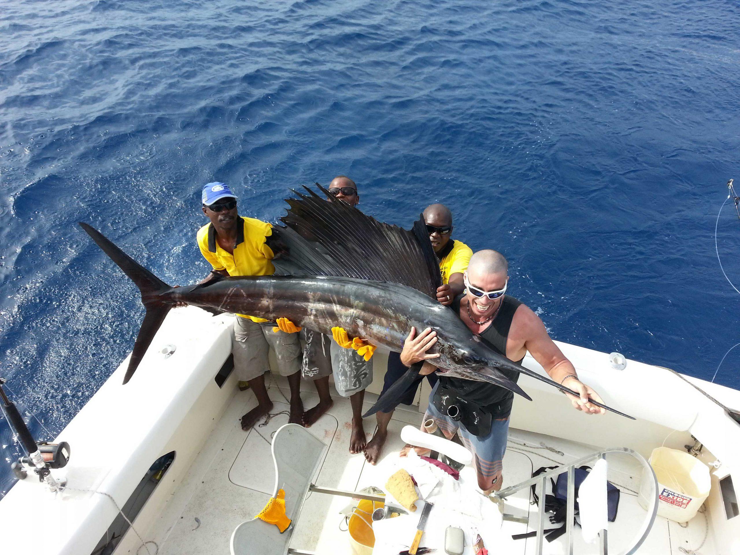 Big game fishing cacth in Kenya- Sailfish